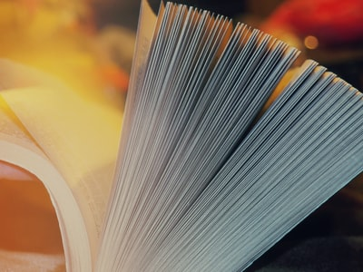 What does the book business teach you about the world of business?